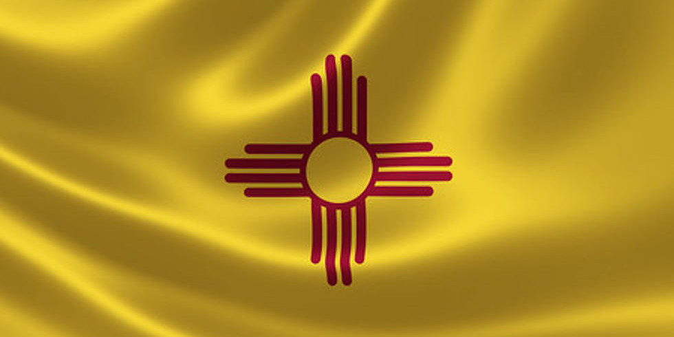 NM General Election for Governor