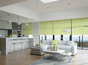 Interior blinds 1.jpg