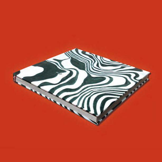 libro de la zebra