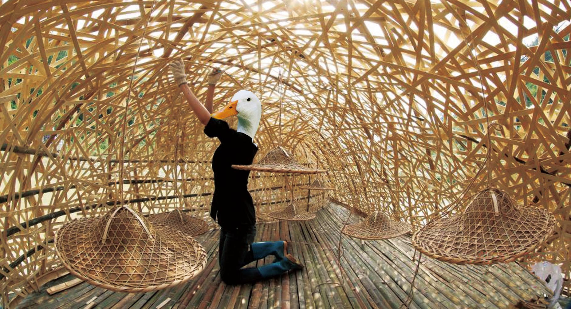 Duck Shelter