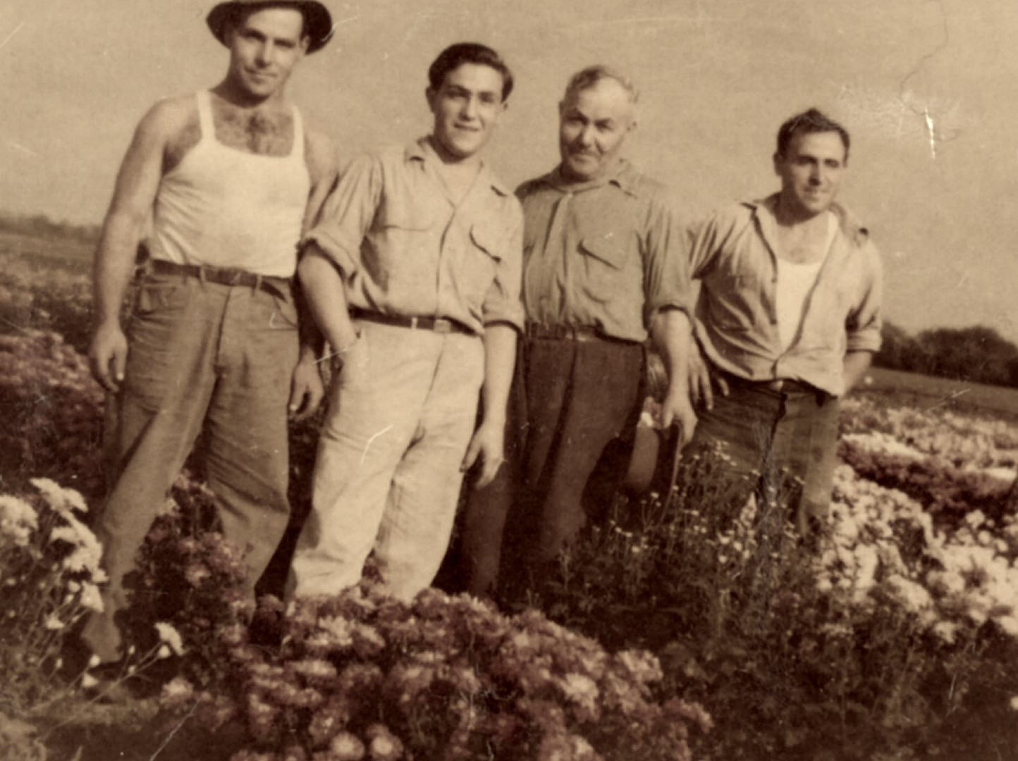 Brothers and Father in mum field 1947.jp