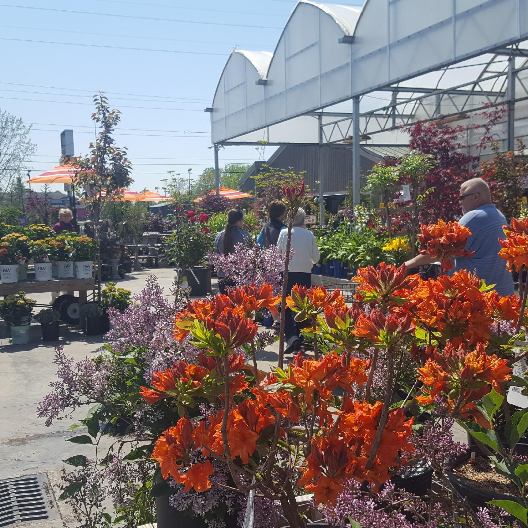 Corso's L Florist L Greenhouse L Landscape L Sandusky L Ohio