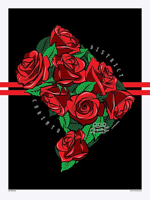 DC Roses
