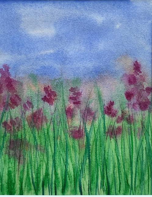 Blooming Grassland II