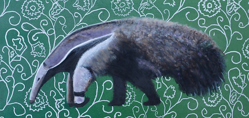 Anteater / Tamanduá
