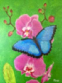 maripi butterflyandorchid.jpeg