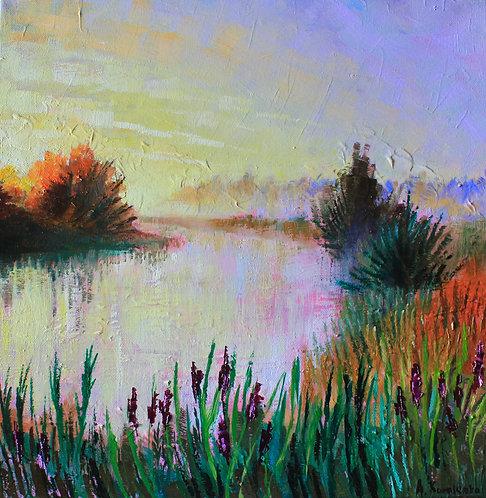 Early morning on Needwood Lake