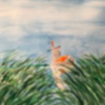 windmill in reeds.jpeg