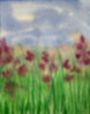 blooming grassland 2.jpeg