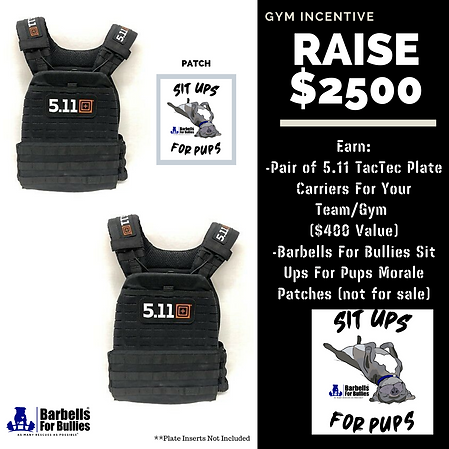 sit ups for pups gym incentive 2500 (2).