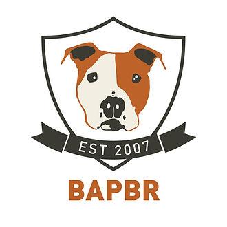 BAPBR_Logo_color.jpg