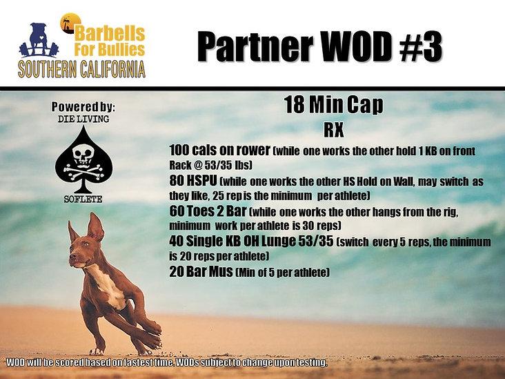 Partner WOD 3 RX.jpg