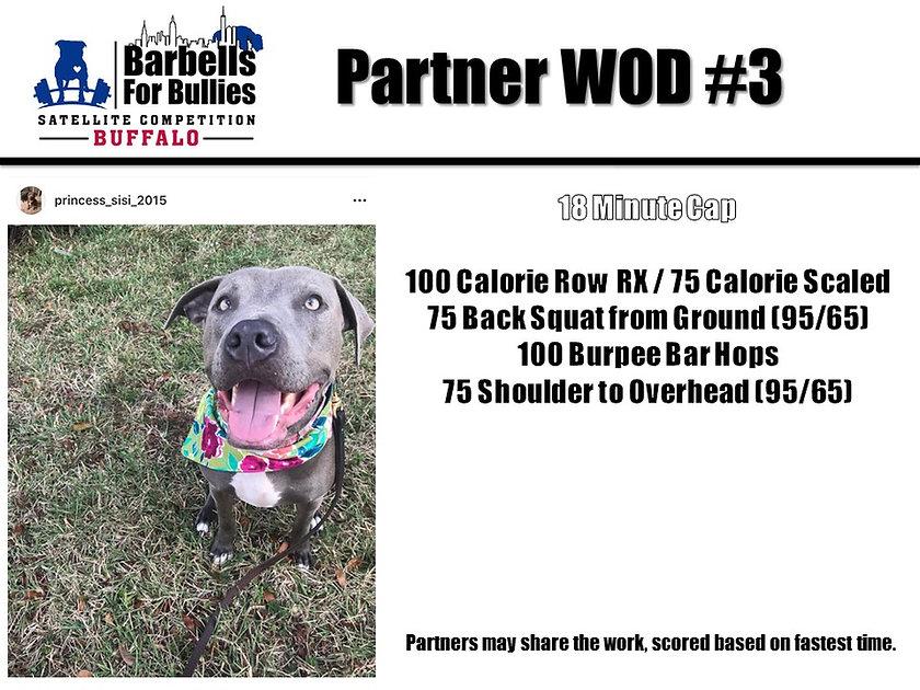 Partner WOD 3 - Buffalo.jpg