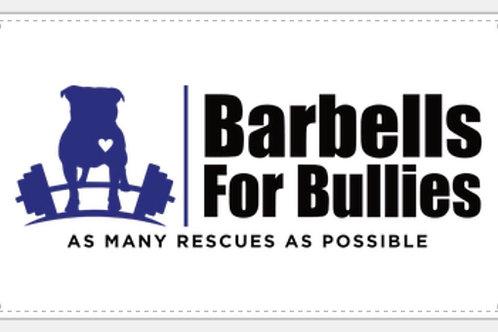 Barbells for Bullies Gym Banner