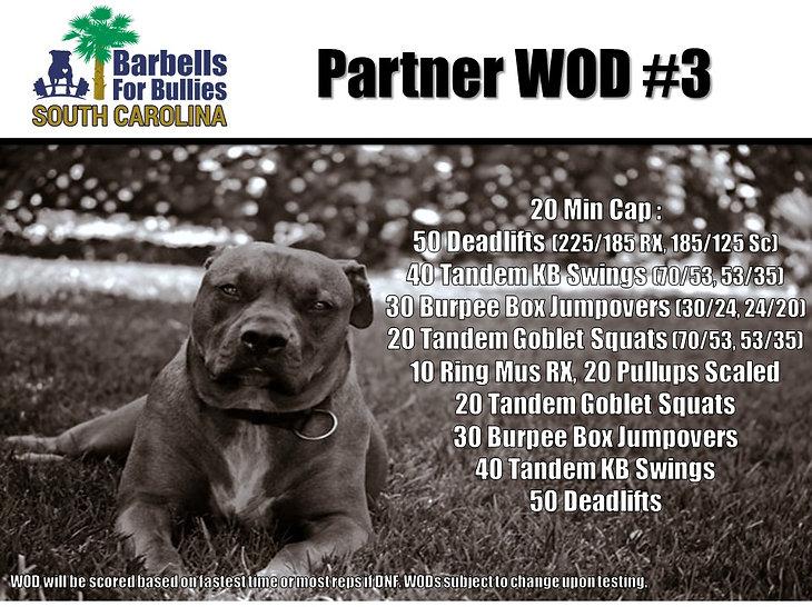 Partner WOD 3.jpg