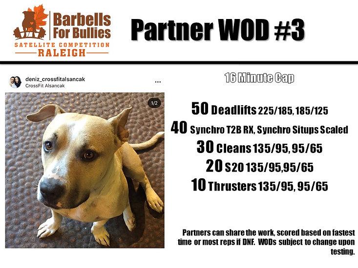 Partner WOD 3 Raleigh.jpg