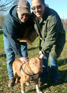 Biggie with his new family!