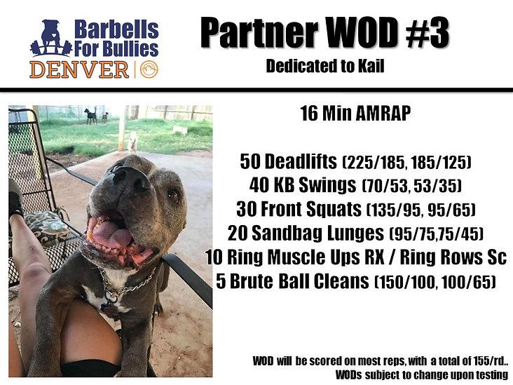 Partner WOD 3 Denver.jpg
