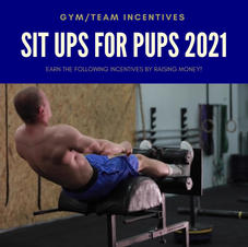 Sit Ups For Pups TEAMS Incentives Video