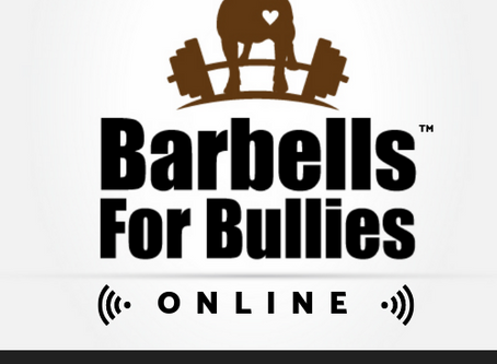 Barbells For Bullies: 2019 and Beyond