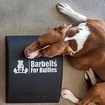 barbells-3_540x.png