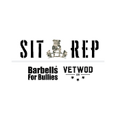 Sit Rep B4BVW (1).png