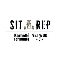 Sit Rep B4BVW (1).png