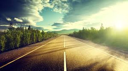 The Bagel Journey