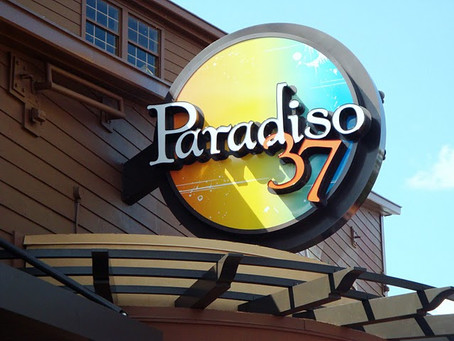Paradiso 37: Listen to the Warning Signs