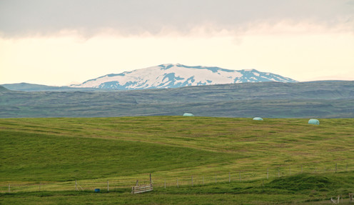 snowy mountain and grassland.jpg