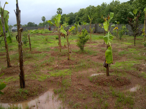 2013 monsoon.jpg