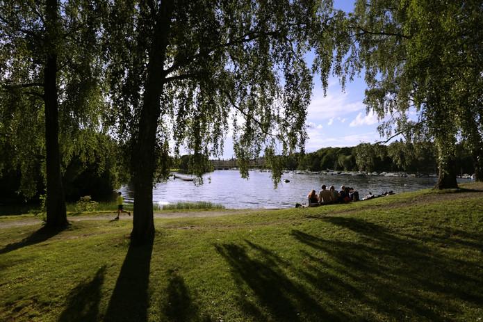 IMG_1199_Sweden.jpg