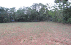 first view of land 2011.jpg