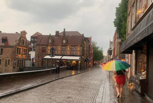 bruges dog walker in rain.jpg