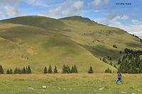 walk at transbucegi.jpg