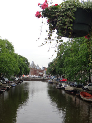 A flower pot hanging over Amsterdam canal