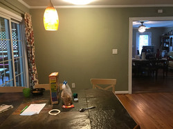 Forrestal Drive Kitchen Before