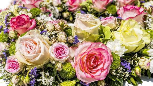 flowers-3441662_1920.jpg