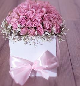 flower-3215151_1280_edited.jpg