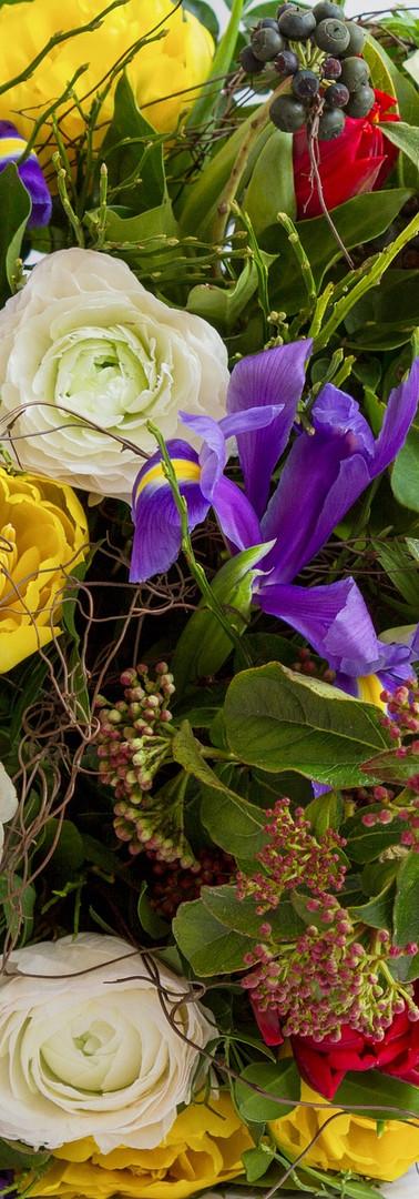 flower-3218896_1920.jpg
