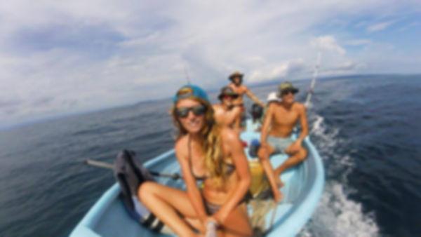 Volunteer in Drake Bay, volunteer in costa rica, volunteer with wildlife, volunteer hostel