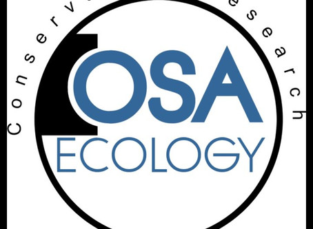New App allows anyone to participate in conservation efforts on the Osa