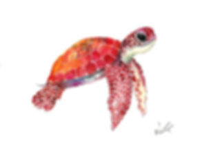 baby-sea-turtle-children-room-artwork-tu