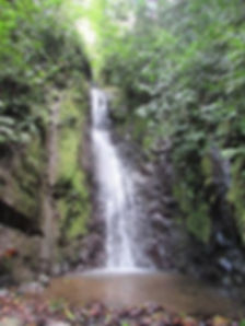 waterfall golfito.jpg