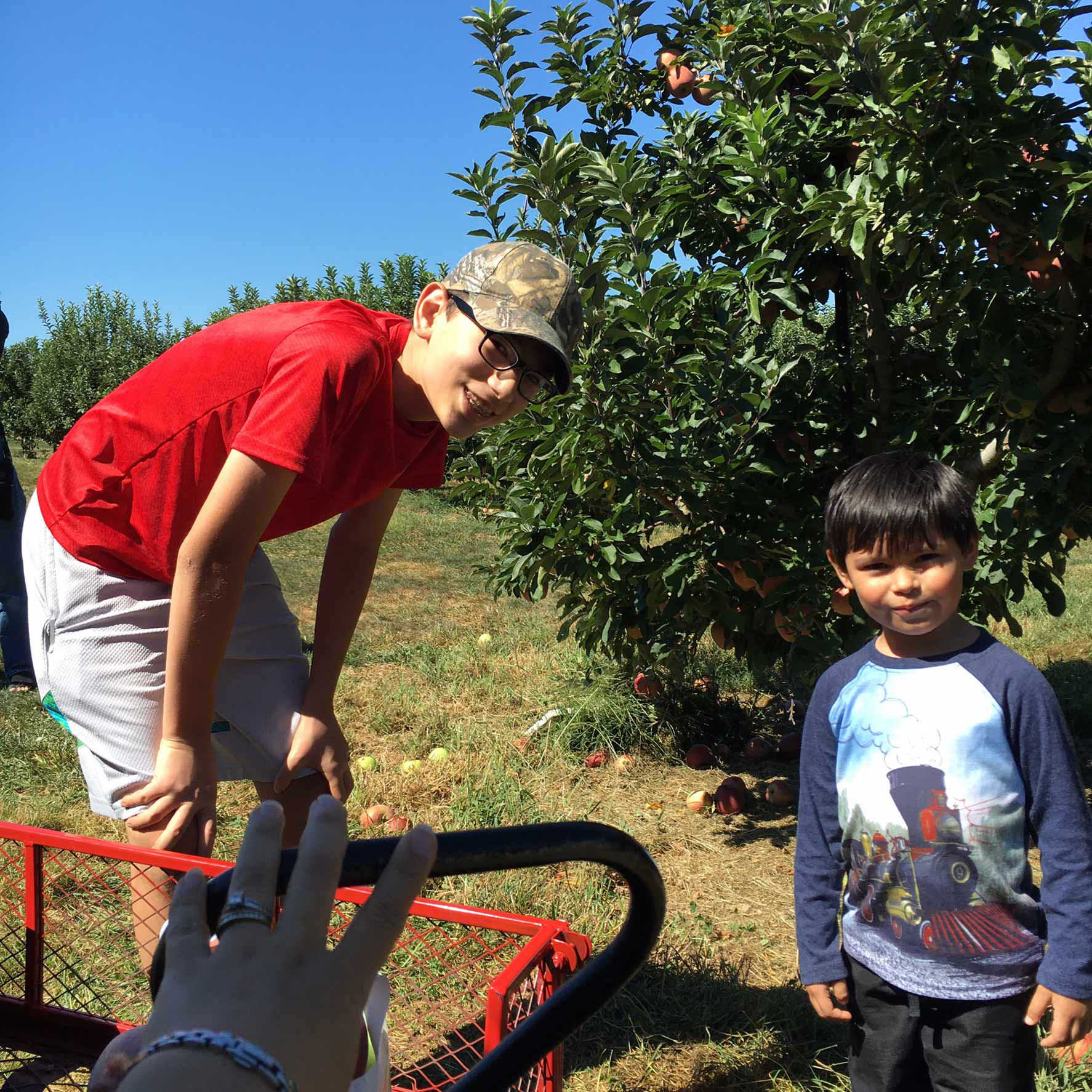 WinchesterApplePicking3.jpg