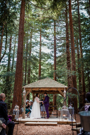 Woodland Twilight Wedding Two Woods Estate
