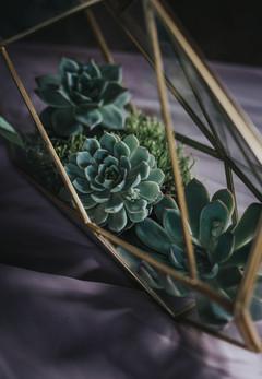 Succulent Wedding Decor.jpg