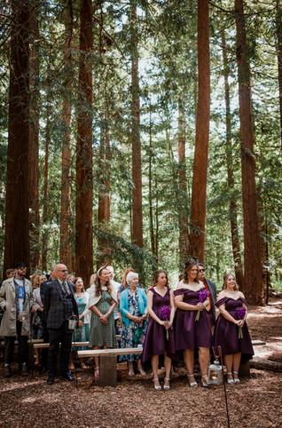 Two Woods Estate Purple Wedding