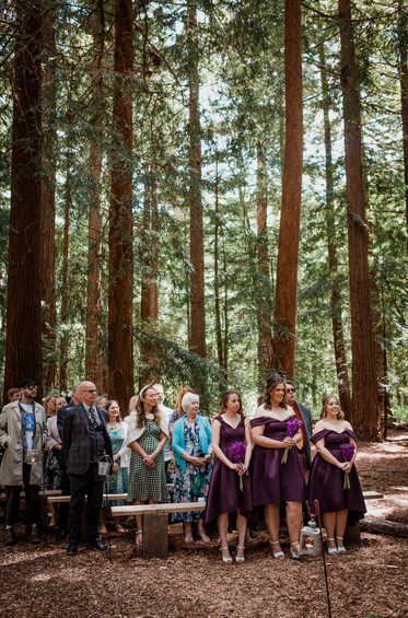 Two Woods Estate Purple Wedding