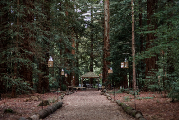 Two Woods Estate Woodland Wedding Venue